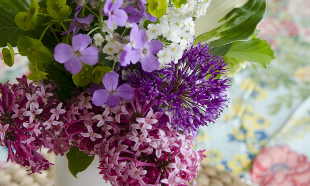 Les fleurs sauvages du marché Atwater
