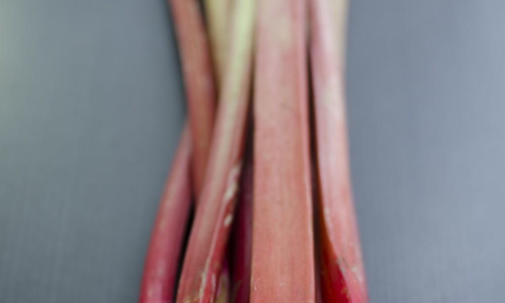 Une rhubarbe, trois recettes